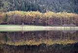 Autumn Reflections, Loch Eck