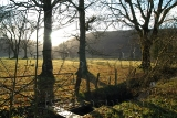 Winter Sun, Glendaruel
