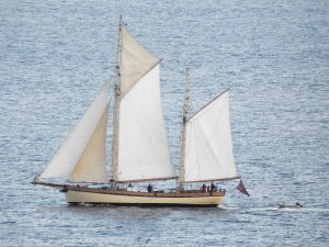 "Sailing Ship ""Maybe"" on Clyde"