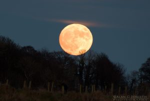 Full Moon Over South Cowal