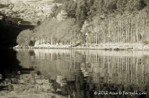 Reflections, Loch Goil, Argyll