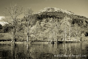Winter Reflections, Loch Eck, Argyll
