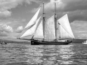 Gallant, Tall Ships Race Greenock 2011