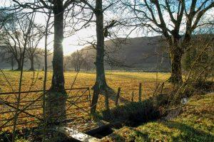 Glendaruel, Argyll